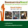 Boomservicenoord